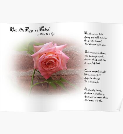 When the Rose is Faded Poster