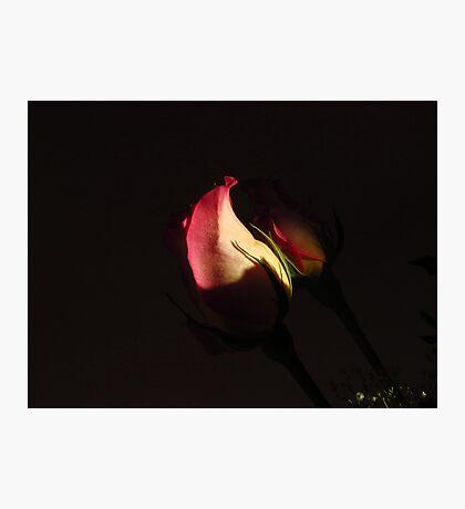 Shaded Love~! Photographic Print