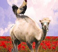 Rooster Prince, the Camel and the Poppy Field! by Abie Davis