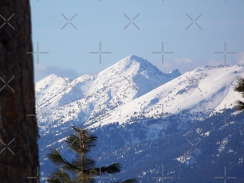 Snow Capped Peaks by Betty  Town Duncan