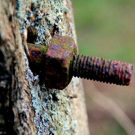 COLOURS OF RUST by BOUDEWIJN