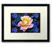 Rose and blue spiderworts Framed Print