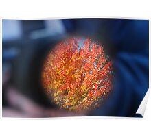 Autum through a Camera Lens Poster
