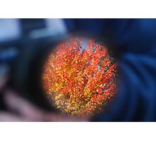 Autum through a Camera Lens Photographic Print