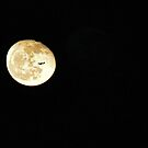 Fly Me To The Moon by Peter Rivron