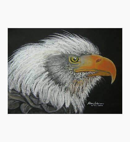Steve's Bald Eagle Photographic Print