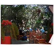 Jungle In The Heart Of Puerto Vallarta - Selva En El Corazon De Puerto Vallarta Poster