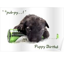 Puppy pub-py birhday Poster