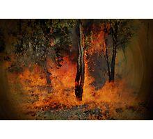 Summer Bush Fire Photographic Print