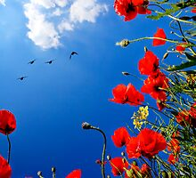 Remembrance by Viktor Bors