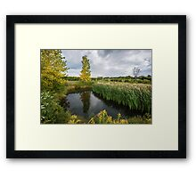 An idyllic pond, surrounded by autumn trees and green grass Framed Print