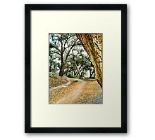 Whiting Woods Framed Print