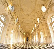 La Venaria Reale by Guy Carpenter