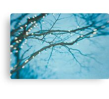after midnight. Canvas Print