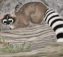 Ringtail Cat by Walter Colvin