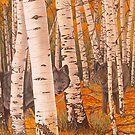 Autumn Eyes - Iphone by Graeme  Stevenson