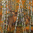 Autumn Stags by Graeme  Stevenson