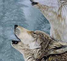 Call of the Wild by Graeme  Stevenson
