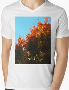 Minutes seems like days..Since the fire ruled the sky..The world slowly decays..destruction fills my eyes..The rich became the beggar..And the fool became the wise Mens V-Neck T-Shirt