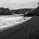 Yaquina Head In B&W 2 by Nick Boren