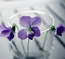 Violets by Nathalie Chaput