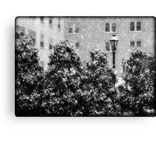 Milwaukee Winter © Canvas Print
