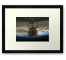 Teapot of the May Queen Framed Print