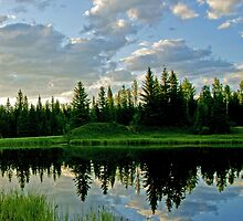Landscape Reflection by Keri Harrish
