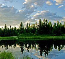 Landscape Reflection by Keri Harrish