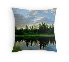 Landscape Reflection Throw Pillow