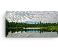 Landscape Reflection Too Canvas Print
