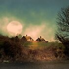 Lit By Moonlight by naturelover