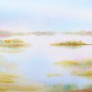 eloquent dawn - viii by Joel Spencer