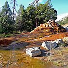 Thermal Spring near Hermosa, Route US550, Colorado by Margaret  Hyde