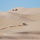 Imperial Sand Dunes ~ Best Viewed Large by barnsis