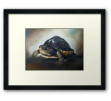 'One of the patients...' Turtle Rescue Team, North Carolina State University College of Veterinary Medicine Framed Print
