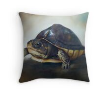 'One of the patients...' Turtle Rescue Team, North Carolina State University College of Veterinary Medicine Throw Pillow