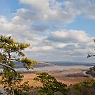 View from Pinnacle Mountain - Winter by Lisa G. Putman