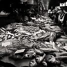 Fish for sale at Barcelona's Las Ramblas market by Nicole Shea