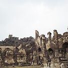 Golconda Ruins by Shemah Appleton