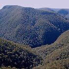 Grose River lookout - lower Blue Mts by Hugh Cross