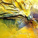 Broken Glass I by Astrid Strahm