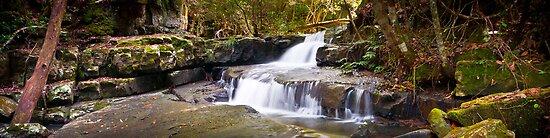 Jerusalem Creek, Barrington Tops National Park by 4thdayimages