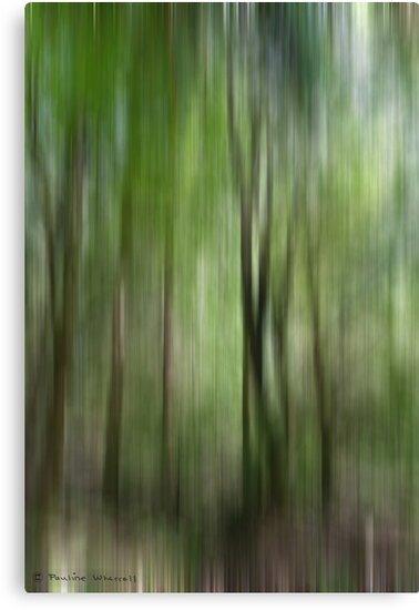 Woodland abstract by Photos - Pauline Wherrell