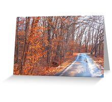 ice road Greeting Card