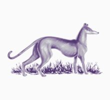 Sam's Purple Whippet Kids Clothes