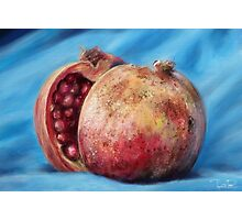Classic Still Life Pomegranate Photographic Print