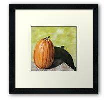 Single Pumpkin Still Life Framed Print