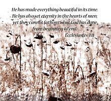 Ecclesiastes 3:11  by Pietrina Elena