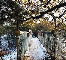 Archway to winter by JHuntPhotos